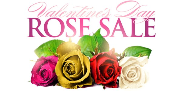 Click For Rose Sale Information